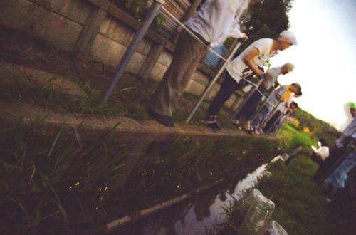 201408_hotaru.jpg