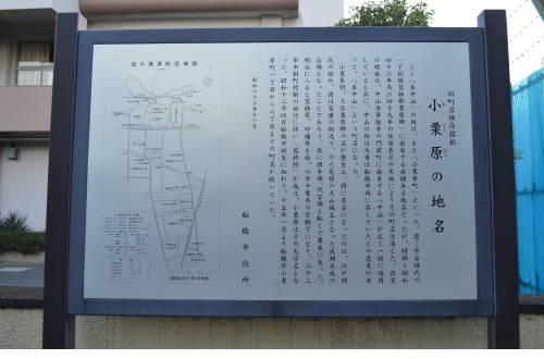 201409_sanpo_1.jpg