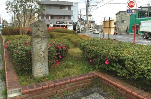201501_sanpo_main.jpg