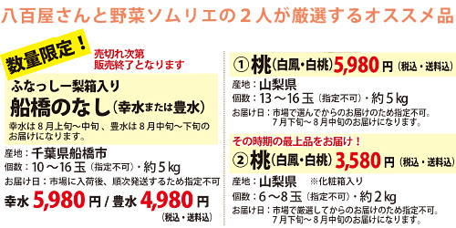 201507_chokusoubin02.jpg
