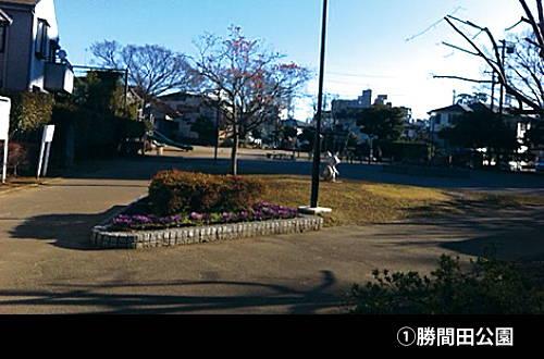 201602_sanpo_01.jpg