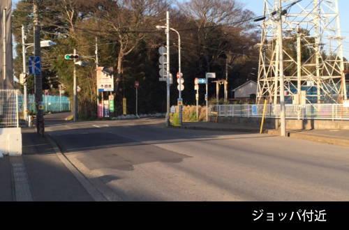201604_sanpo_02.jpg
