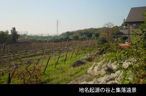 201604_sanpo_03.jpg