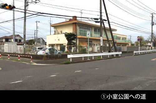 201605_sanpo_01.jpg