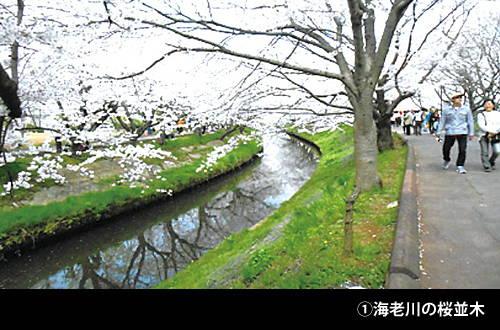 201608_machiaruki_01.jpg