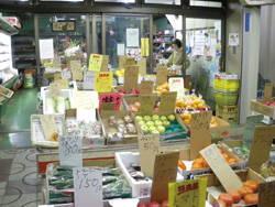 201201_hayashida.jpg