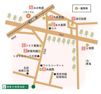 201208_nashi3_1.jpg