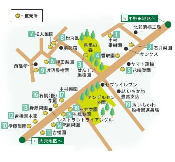 201208_nashi4_1.jpg