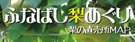201208_nashi_logo.jpg