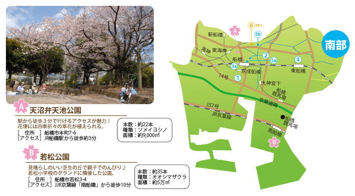 天沼弁天池公園・若松公園