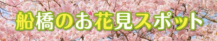 201403_hanami_logo.jpg