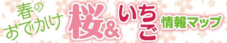 201503_sakuraichigo_logo.jpg