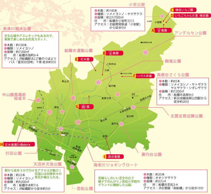 201503_sakuraichigo_map.jpg
