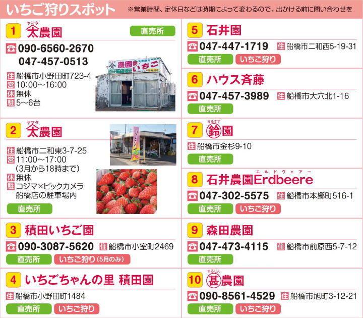 201603_sakura_03b.jpg