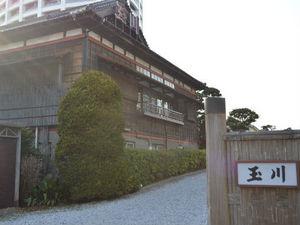150303tamagawa03-1.jpg