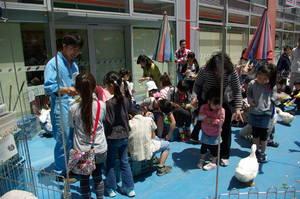IMGP4715kirayume2011.jpg