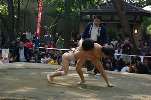IMGP9946sumou3.jpg