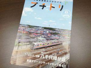 IMG_7535puchitori.jpg