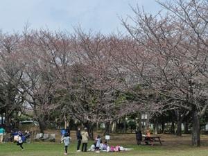 gyoudakouen04.JPG