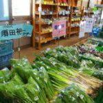 畑のマルシェ 味菜畑