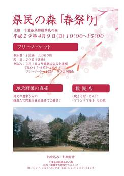 170409_harumatsuri
