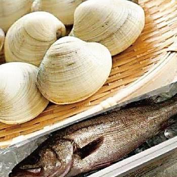 201704_shellfish_12a
