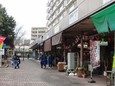 shibayama3