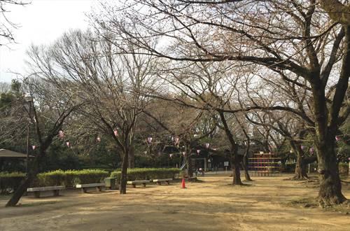 201705_picnic_03a