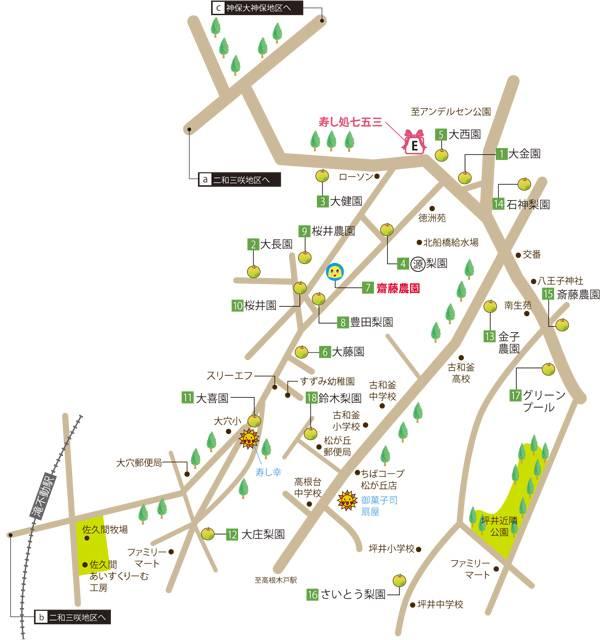 201708_nashi_06a