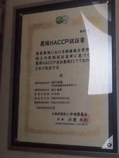 minagawa06